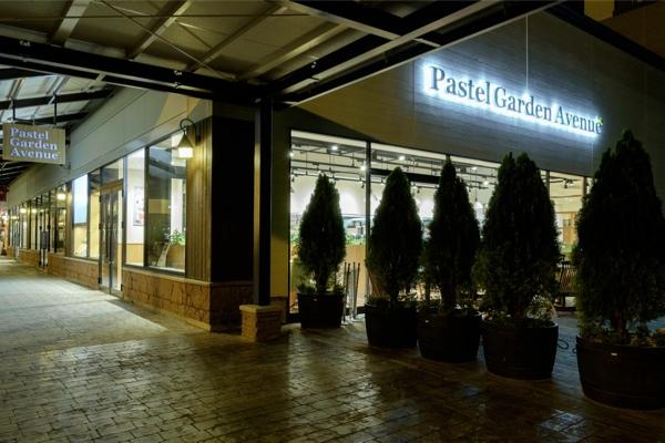パステル/ Pastel
